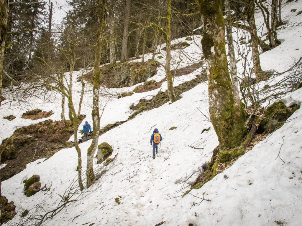 hiking in the Vosges Mountains