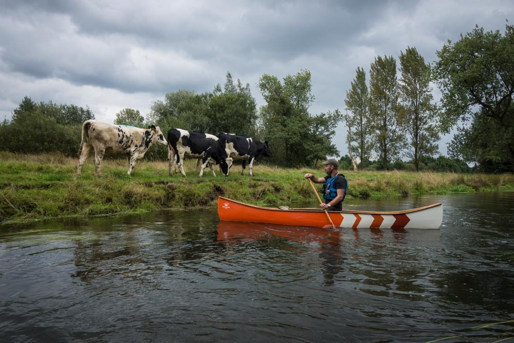 Canoeing on the dommel