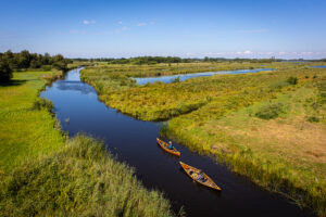 Freeranger canoe guided canoe trips in the weerribben-wieden