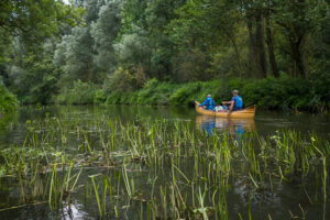 Guided Canoe trips on the Dommel