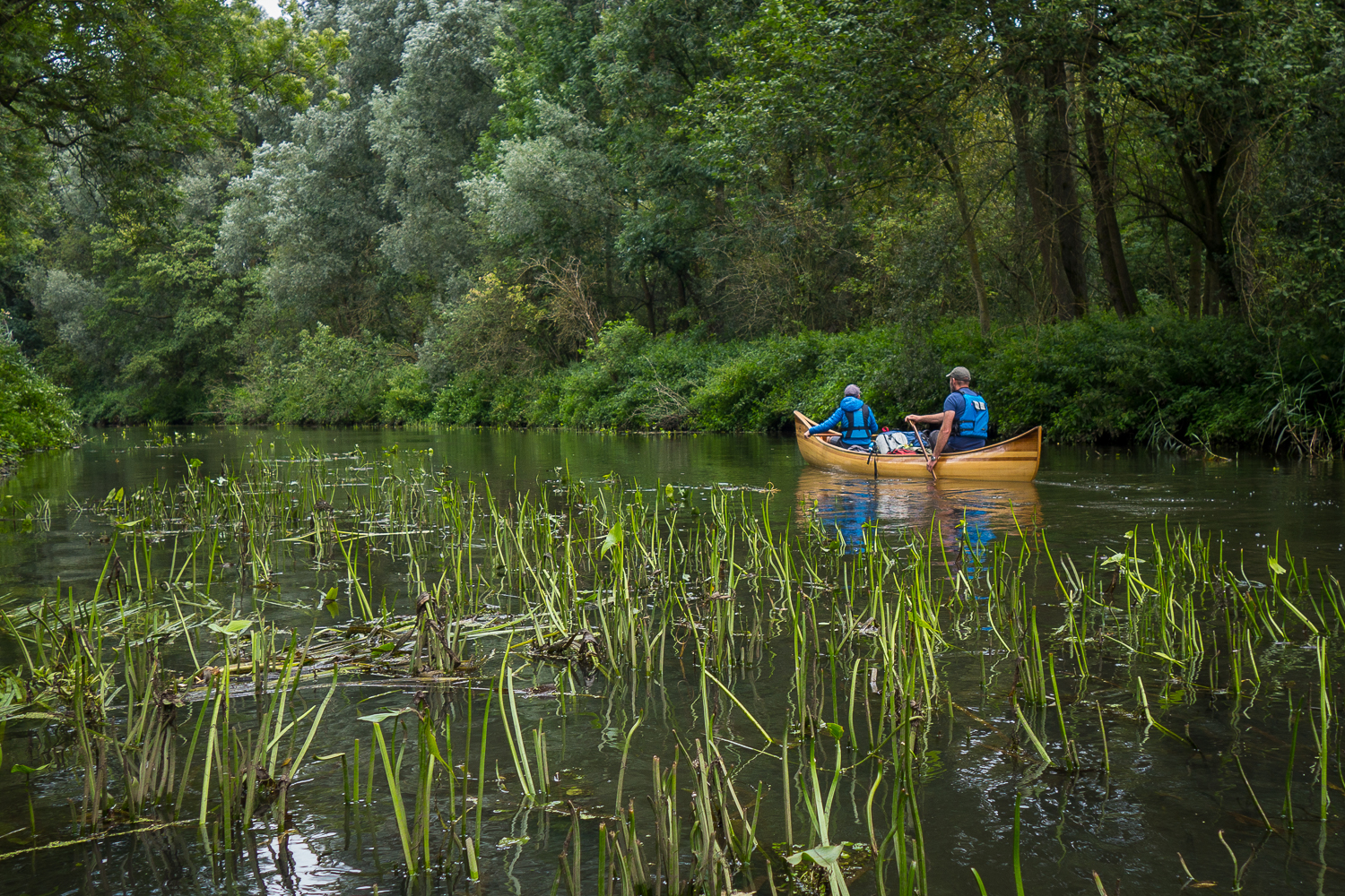 Guided Canoe trips on the Dommel