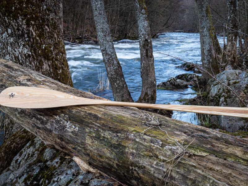 The North Woods paddle